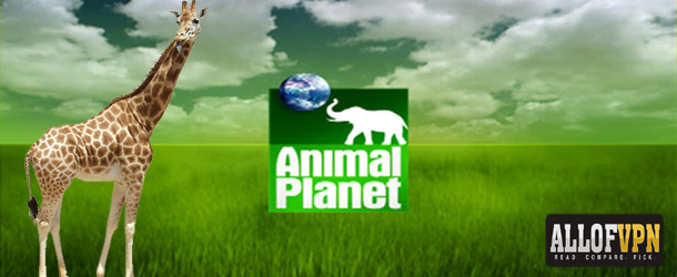 Animal Planet Outside US Learn How to Watch Animal Planet Outside US